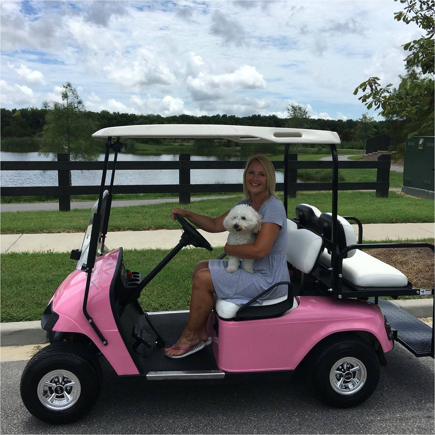 custom barbie cart ezgo