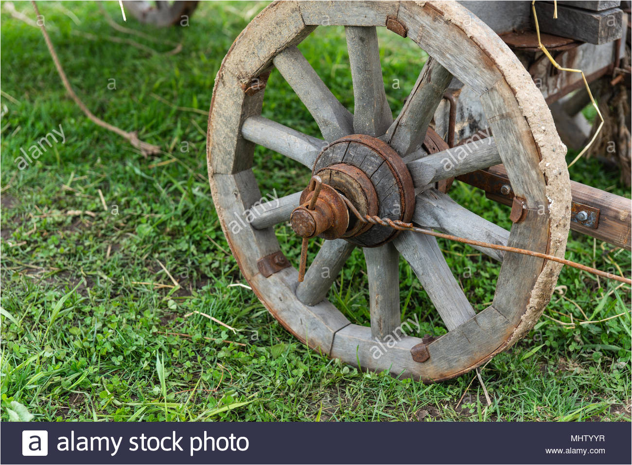 wooden wheel of an ancient cart on a ground covered with green grass rusty metal