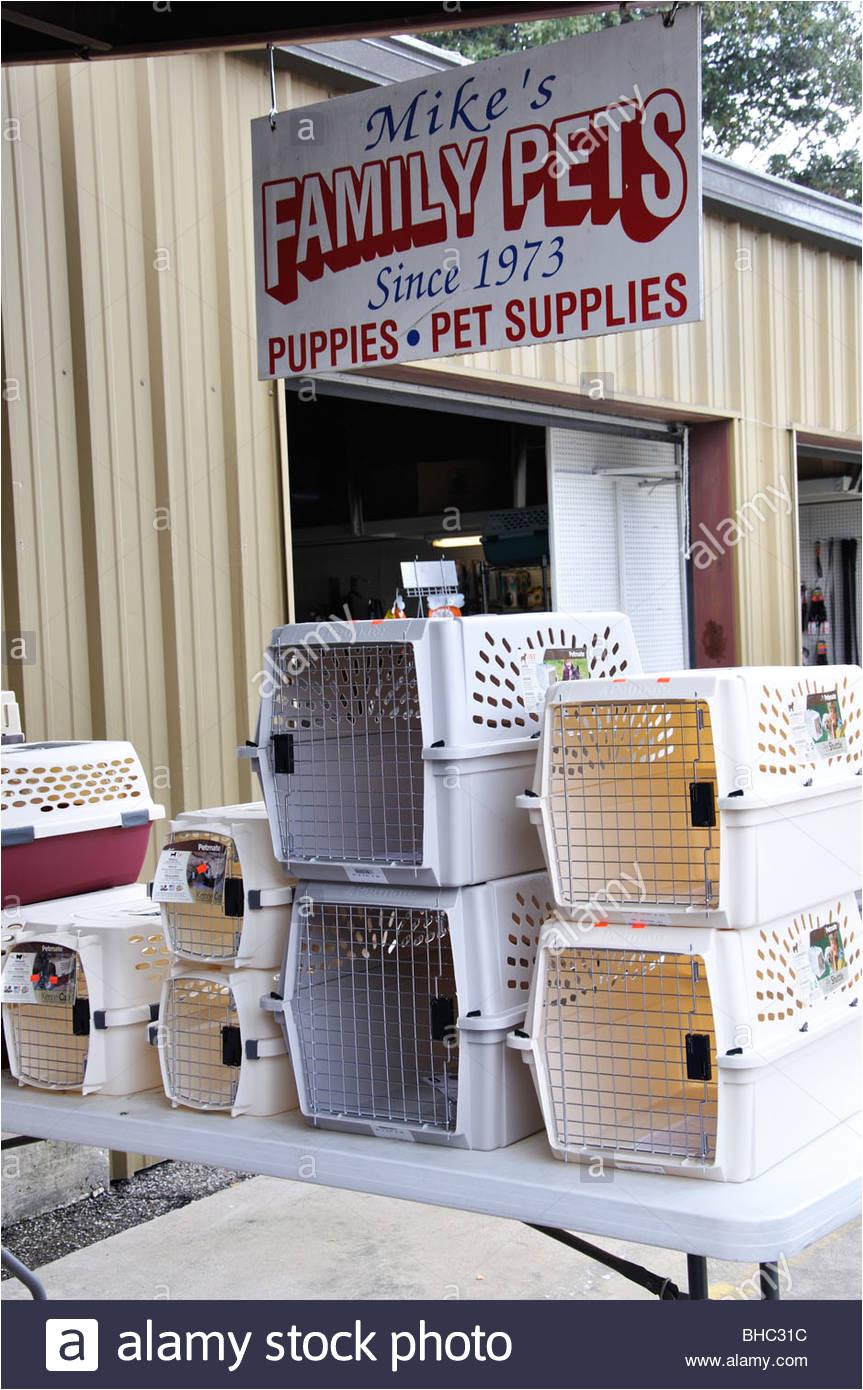 local small pet shop dallas area texas usa stock image