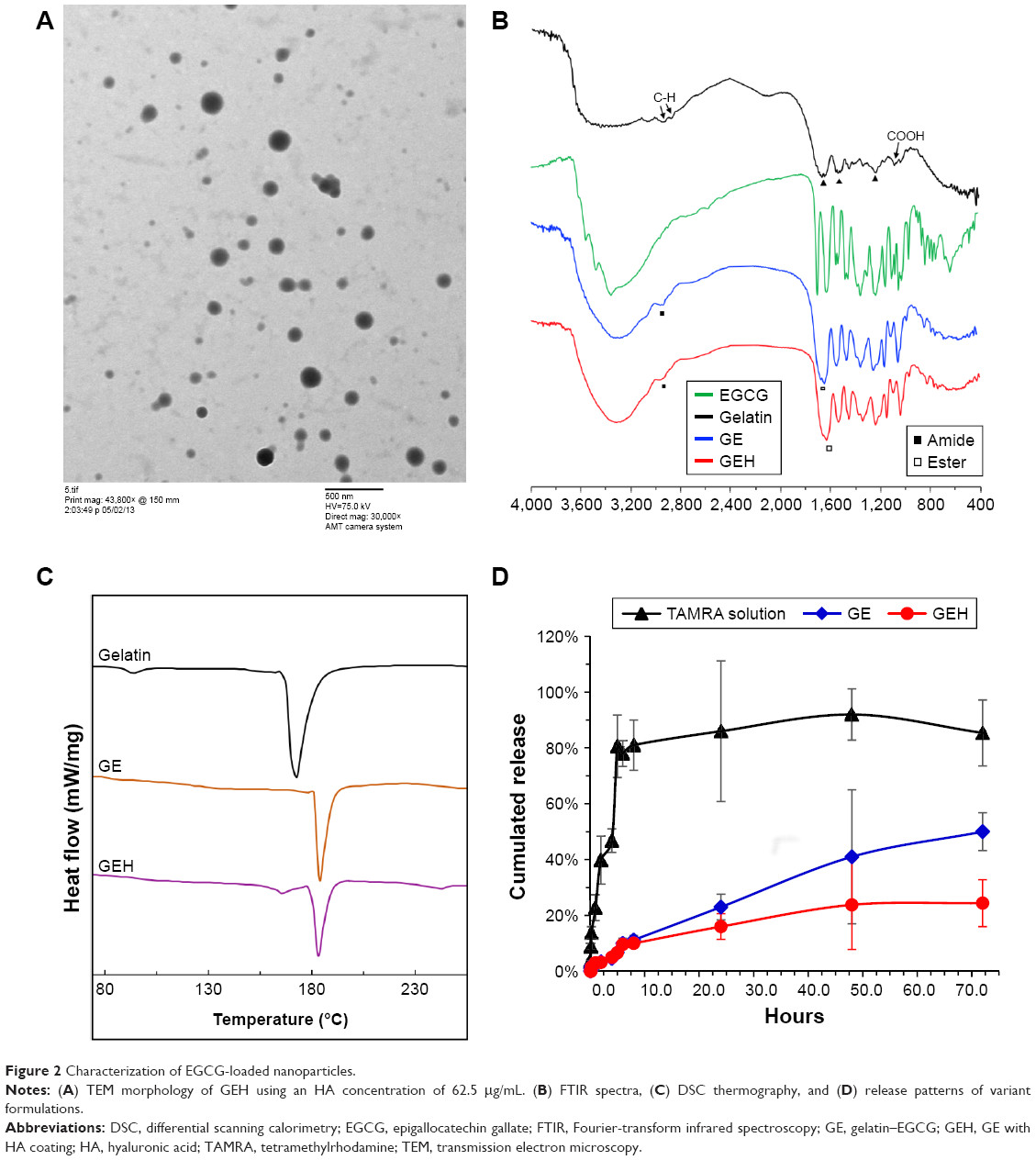 figure 2 characterization of egcg loaded nanoparticles notes a tem morphology of geh using an ha concentration of 62 5 i g ml b ftir spectra c dsc
