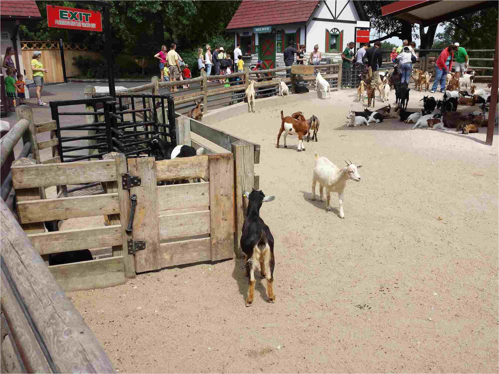 animals at grant s park