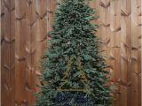 100 Pe Christmas Tree Artificial Christmas Tree Delaware Deluxe 100 Pe