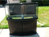 72 Gallon Bow Front Aquarium Stand 72 Gallon Glass Bowfront Aquarium Kit Monsterfishkeepers Com