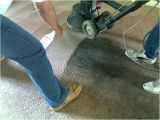A1 Carpet Cleaning Yuba City Above All Carpet Cleaning 530 671 1616 Yuba City Carpet
