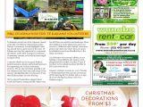 Aa Carpet Cleaning Casper Wy Upper Clutha Messenger 4th December 2013 by Print It Wanaka Ltd issuu