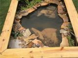 Above Ground Turtle Pond Ideas Our New Diy Above Ground Pond for Bella the Turtle Projects to