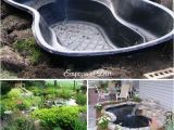 Above Ground Turtle Pond Kit 20 Innovative Diy Pond Ideas Letting You Build A Water Feature From