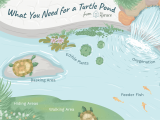 Above Ground Turtle Pond Kit Pet Aquatic Turtles and Outdoor Ponds