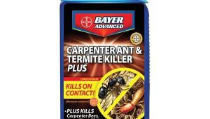 Advance Carpenter Ant Bait Canada 687073003154 Upc Bayer Carpenter Ant Termite Killer