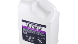 Advance Carpenter Ant Bait Reviews Buy Advance Carpenter Ant Bait 2 Lb to Get Rid Of Ants