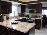 Alaska White Granite with Espresso Cabinets Bedroom Modern Minimalist Kitchen with Espresso Cabinet