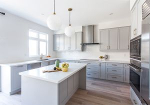 Alaska White Granite with Gray Cabinets Storage Contemporary Light Grey Wooden Light Colored Kitchen