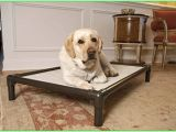 Anti Chew Dog Bed Ireland Medium Chew Resistant Dog Bed Waterproof Dog Bed Anti