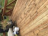 Armstrong Clark Stain where to Buy Best Stain for An Old Deck Best Deck Stain Reviews Ratings