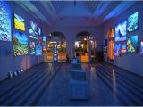 Art Galleries In Sarasota Fl Massimo Meda Art Gallery Sarasota Fl Anmeldelser