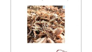 Asplundh Free Wood Chips Review asplundh Free Wood Chips A Story Of Wood