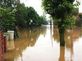Basement Waterproofing Staten island 31 Luxury Basement Flood Protector Photograph Basement