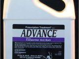 Basf Advance Carpenter Ant Bait Advance Carpenter Ant Bait Pest Control Supplies