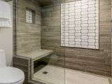 Bathroom Tiles Design Ideas for Small Bathrooms Small Bathroom Tile Shower Ideas Elegant astounding Lowes Shower