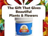 Beat Your Neighbor All Purpose Fertilizer 66 Best Beat Your Neighbor Fertilizer Images On Pinterest