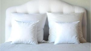 Bed Bath and Beyond Pillow Inserts 16 Pillow Insert 16 Inch Pillow Insert Ikea Freemobie360