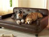 Bedside Platform Dog Bed for Sale Dog Beds for Sale Buy Cheap Dog Beds Dog Pet Beds Dog Beds