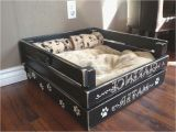 Bedside Platform Dog Bed Plans Incredible Bedside Platform Dog Bed Pertaining to Provide