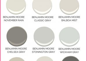 Benjamin Moore Balboa Mist Reviews Gray Paint Colors for Your Home Best Benjamin Moore Gray Paint