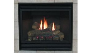 Best Direct Vent Gas Fireplace Reviews Best Direct Vent Gas Fireplace Reviews 2015 2016