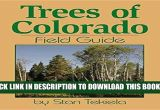 Best Trees for Colorado Pdf Trees Of Colorado Field Guide Tree Identification Guides Full