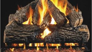 Best Vented Gas Logs top 10 Best Rated Vent Free Gas Logs In 2018 Reviews