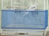 Bird Cage Seed Guard Acrylic Diy Bird Cage Seed Guard Diy Do It Your Self