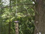 Birds Choice 12-ft Steel Bird Feeder Telescoping Pole Winsome Telescoping Bird Feeder Pole System 20 Telescoping
