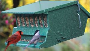 Birds Choice Bird Feeders Bird Feeder Christmas Gifts for the Home
