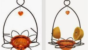 Birds Choice Flower oriole Bird Feeder Small orange Wild Birds Unlimited Mid Michigan Latest Posts