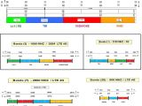 Bluewave Pet Sitter Login Combinatore Telefonico Gsm Urmet Wowkeyword Com