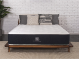 Brooklyn Bedding Best Mattress Ever the Brooklyn Signature Hybrid Mattress Brooklyn Bedding