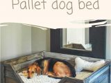 Built In Entertainment Center Plans Free Diy Pdf Tutorial Pallet Dog Bed 1001 Pallets Free Download How