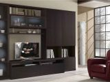 Built In Entertainment Center Plans with Drywall Home Built In Bar and Wall Unit Ideas Magnificent Living Room