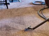 Carpet Cleaner Amarillo Tx Apex Carpet and Upholstery Cleaning Carpet Cleaning Service In