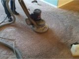 Carpet Cleaners Summerville Sc Cleaning Service Pro Llc Truly Kleen Carpet Cleaning Rx20 Rotary