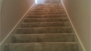 Carpet Cleaning Grand Junction Contact O G Pro Carpet Care Carpet Cleaning Grand Rapids