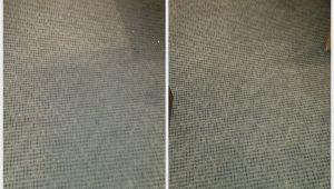 Carpet Cleaning Midlothian Va Carpet Cleaning Midlothian Va Citrusolution