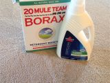Carpet Cleaning Victoria Tx Dry Carpet Cleaning Products Best Of the Best Carpet Cleaning