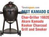 Char-griller Kamado Akorn Grill Review Smokegears Com Smokers thermometers Grinder and