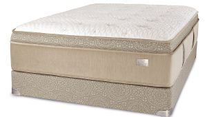 Chattam and Wells Mystique Mattress Chattam Wells Franklin Mattress Euro top