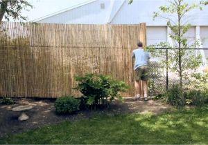 Cheap Privacy Fence Ideas Cheap Diy Privacy Fence Ideas 32 Wartaku Net