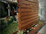 Cheap Privacy Fence Ideas for Backyard 20 Cheap Privacy Fence Design and Ideas Landscape Design