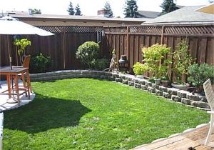 Cheap Privacy Fence Ideas for Backyard 34 Lovely Seven Very Cheap Garden Fence Ideas Ideas