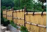 Cheap Privacy Fence Ideas Inexpensive Privacy Fence Ideas torahenfamilia Com